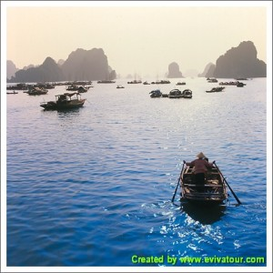 Halong Bay Tours 1 Day
