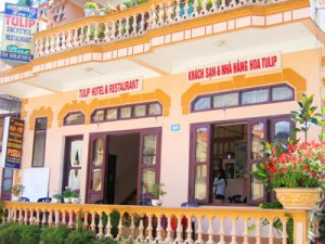 Tulip Guesthouse in Sapa